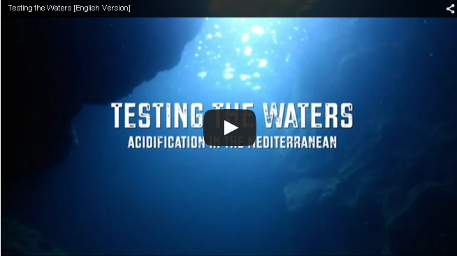 Video highlights the dangers of acidification for Mediterranean aquaculture