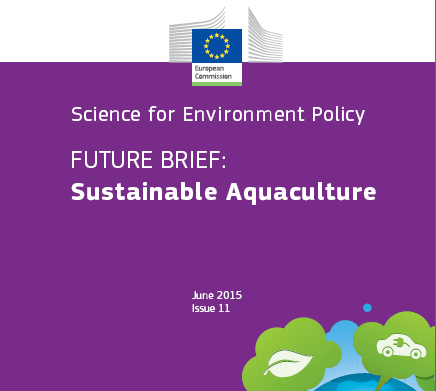 IMTA can deliver sustainable aquaculture and financial benefits, EC report says